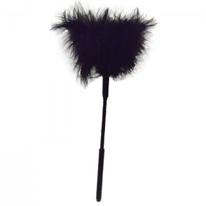 Feather tickler $8